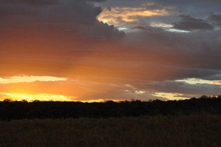 """Big 5"" Safari Tour - African sunset"